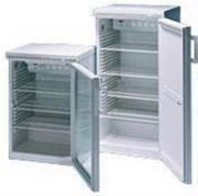 Cooled incubators with solid door--Camlab