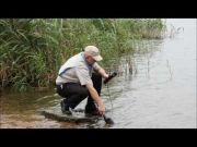 LAQUA U-50 Multi Meters Series - Smart Handheld Water Quality Meters-1232350-Camlab