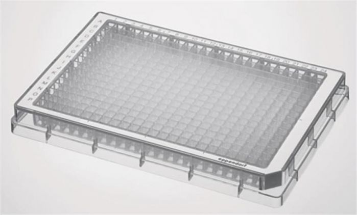 Microplate 384/F-PP, clear wells, border color white, PCR clean, 240 plates (10x 24 pcs.)-0030625102-Camlab