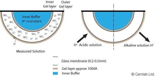 Sensing pH electrode